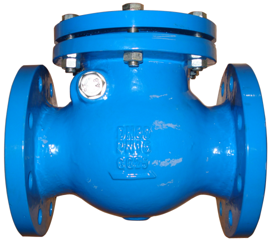 Are not 6 swinging check valve cast iron phrase... Rather