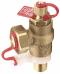 VIR 9315 Combined Pressure/Temperature Plug & Hose Union Drain Valve image