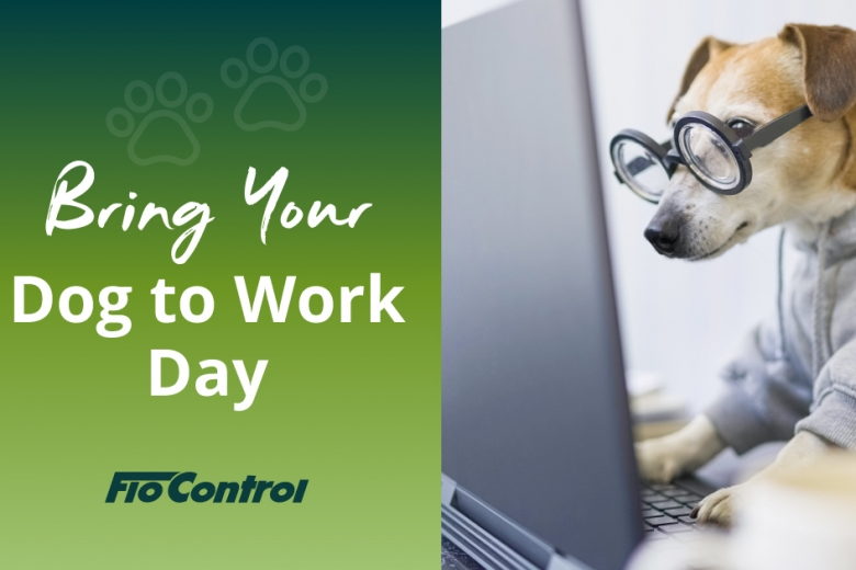 bring-your-dog-to-work_780x520_acf_cropped